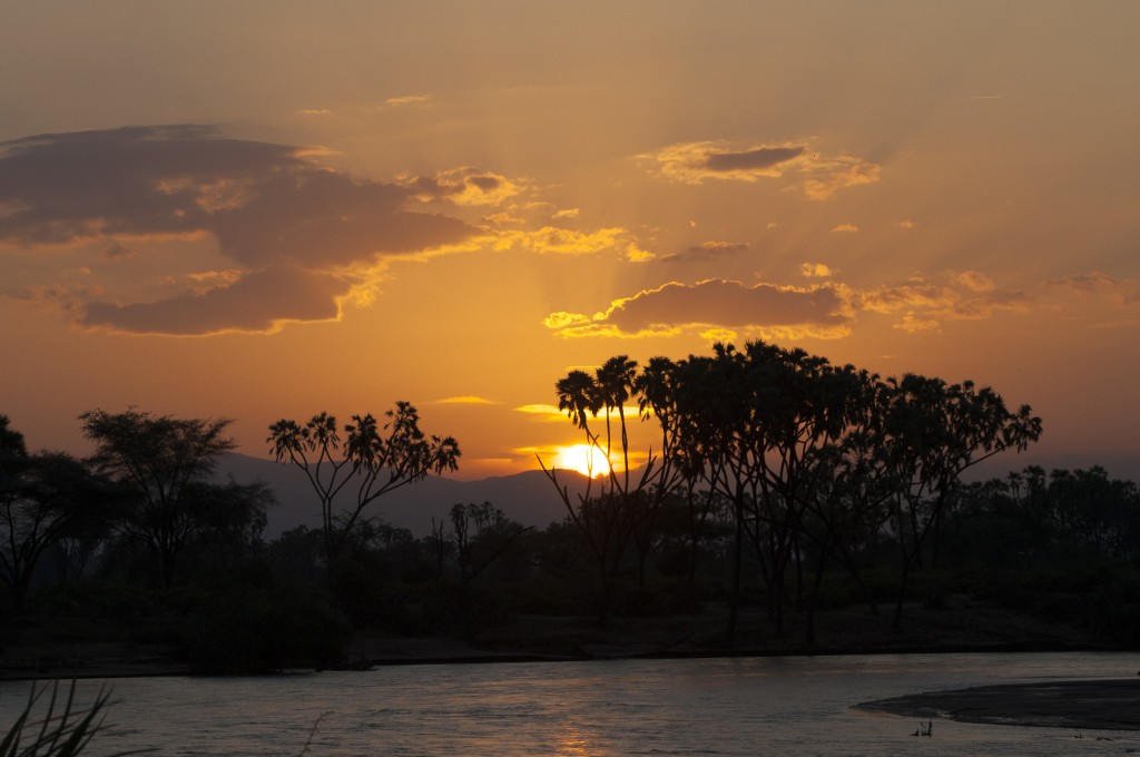 the river in the foreground looks grey and the far bank has silhouetted palm trees against an orange sky with the sun catching the edges of a few clouds
